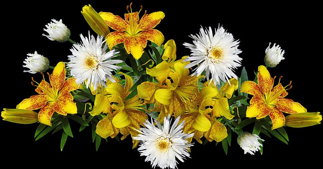 Flowers, Lilies, Yellow, Fragrant, Perfume, Daisies