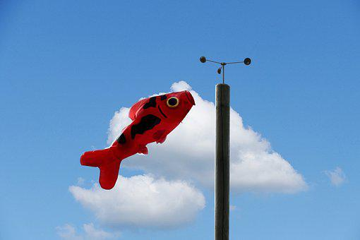 Wind, Windsock, Blowing, Bright, Pole, Weather Vane