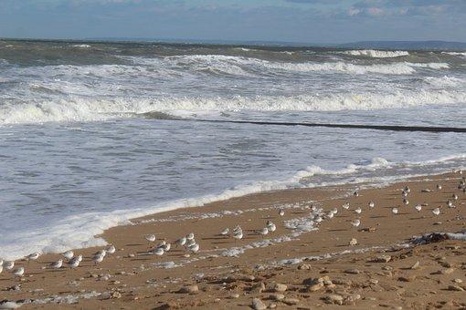 Sea, Storm, Sand, Ocean, Water, Wind, Weather, Nature