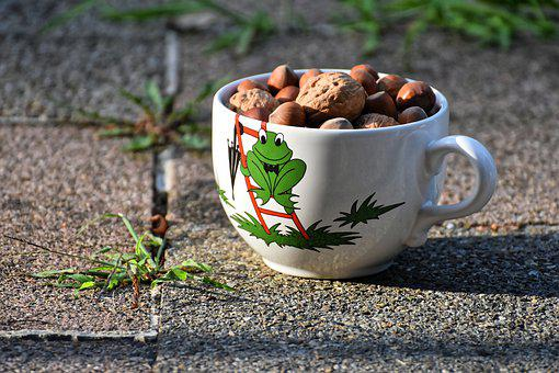 Cup, Nuts, Walnuts, Hazelnuts, Food, Coffee Cup, Funny