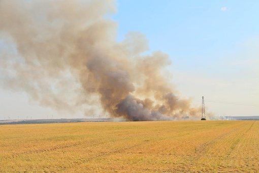 Heatwave, Fire, Fields, Harvest, Heat, Sun, Pre