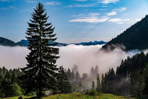 Morning, Morgenstimmung, Mood, Cloud Mood, Landscape