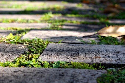 Floor, Path, Summer, Texture, Pattern, Surface, Away