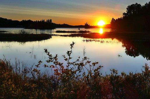 Sunset, Landscape, Lake, Twilight, Evening, Trees