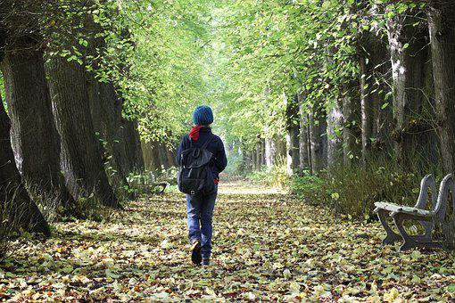 Avenue, Child, Hiking, Human, Lonely, Person, Forest
