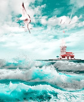 Istanbul, Maiden's Tower, Marine, Seagull, Wave