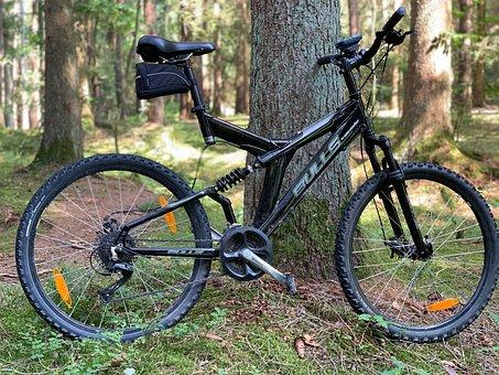 Fully, Mtb, Mountain Bike, Downhill, Mature, Cycling