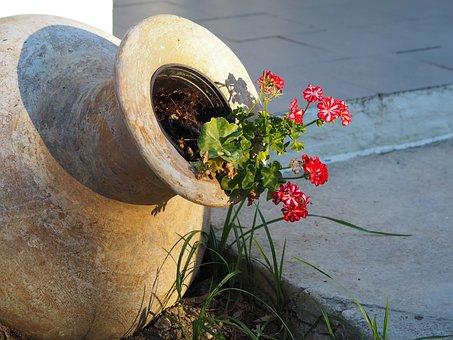 Flower, Amphora, Greece, Garden Design, Nature, Vase