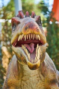 Dinosaur, Animal, Wild, Teeth, Predator, Reptile