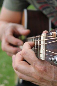 Guitar, Close Up, Garden, Music, Musical Instrument