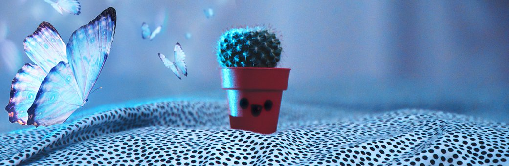 Cactus, Butterfly, Special Effect, Match-fixing