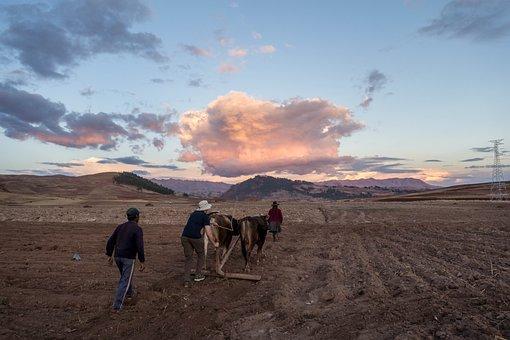Peru, Inka, Farming, Civilization, Landscape, Mountain