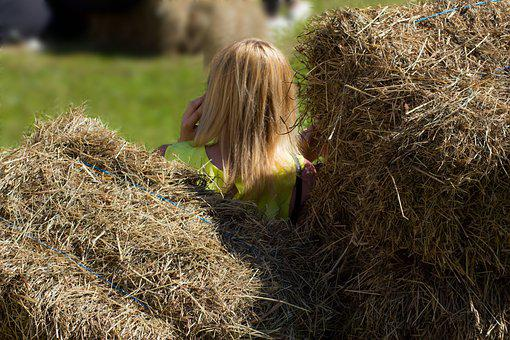 Straw, Girl, Hay, Woman, Hair, Field, Nature