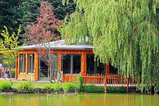 Woodhouse, Weeping Willow, Zoo Greifswald, Nature, Lake