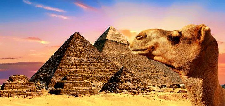 Egypt, Camel, Pyramids, Desert, Sand, Giza, Cairo