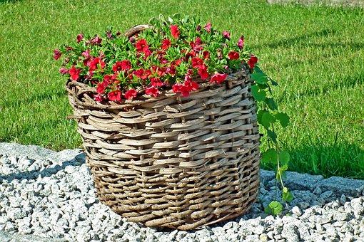 Shopping Cart, Flowers, Garden, Decoration, Summer