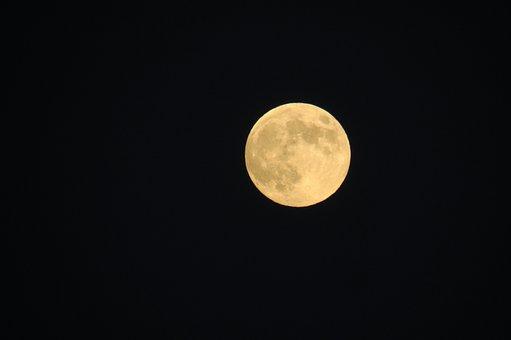 Moon, Full Moon, Night, Sky, Dark, Halloween, Nature