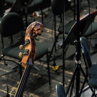 Opera, Lyon, Orchestra Pit, Classical Music, Instrument