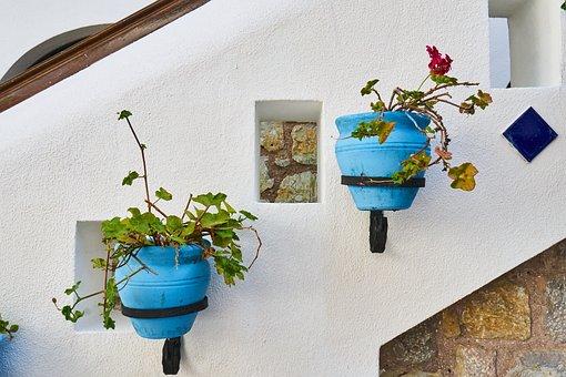 Flowerpot, Flower, Two, Ornament, Decor, Flowers
