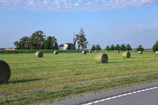 Hay, Field, Countryside, Bails, Rolls, Farm, Pasture