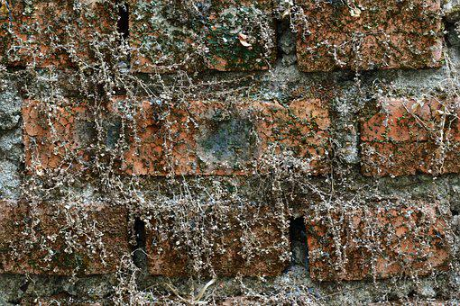 Old Brick, Dry Wall, Vintage, Texture, Architecture