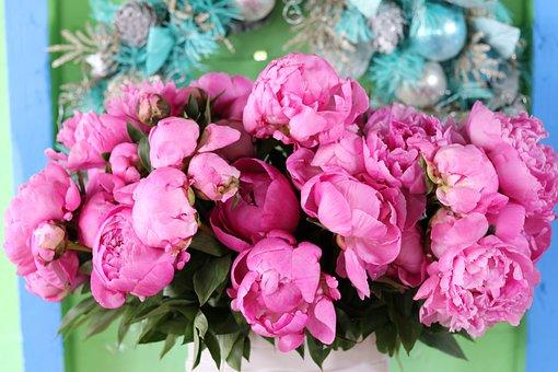 Pink, Vase, Christmas