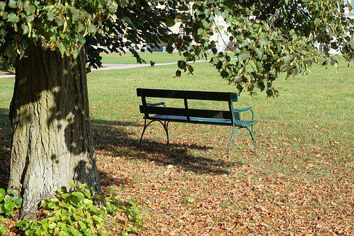Bank, Park Bench, Park, Rest, Tree, Sit, Recovery, Seat