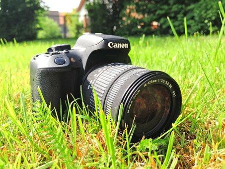 Camera, Lens, Dslr, Slr, Canon, Sigma, Eos, Eos 750d