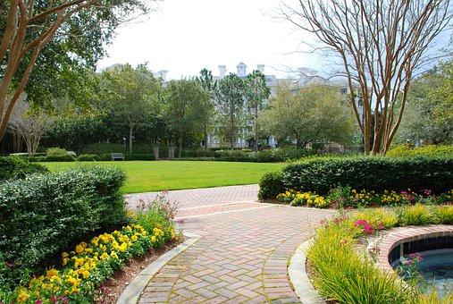 Garden, Walkway, Sidewalk, Beauty, Flowers, Plants