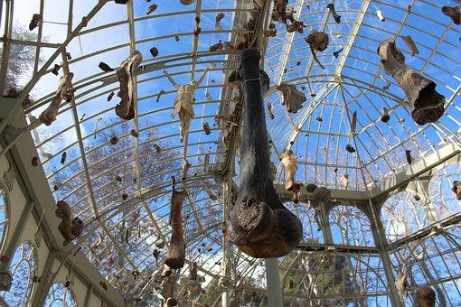 Madrid, Crystal Palace, Fossils, Modern Art, Museum