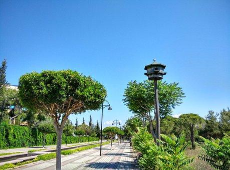 Manavgat, Hotel Complex, Road, Aviary, Trees