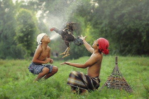 Older Child, Child, Indonesian, Culture, Nature