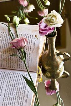 Book, Rose, Novel, Read, Pink, Flora, Blossom, Bloom