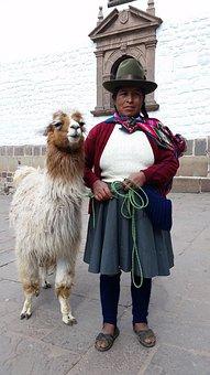 Peru, Cusco, South, America, Llama, City, History