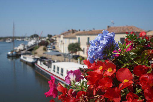 Ships, Flowers, Water, Boat, Sky, Nature, Close Up