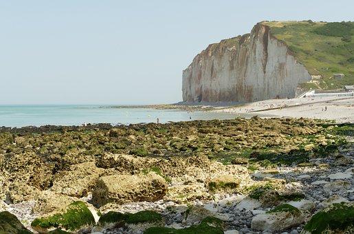 Coast, Sea, Beach, Ocean, Eb, Tide, Dry Fall, Rock