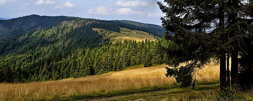 Mountains, Hot, Landscape, Poland, Turbacz, Nature
