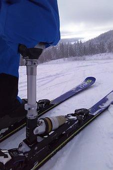 Implants, Ski, Alpine, Snow, Mountain, Winter, Skiers