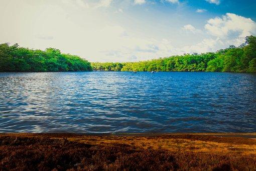 Artwork, River, Lake, Trees, Landscape, Sky, Clouds