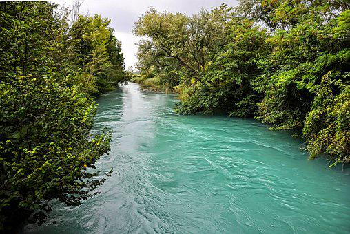 River, Water, Flood, Landscape, Nature, Green, Summer