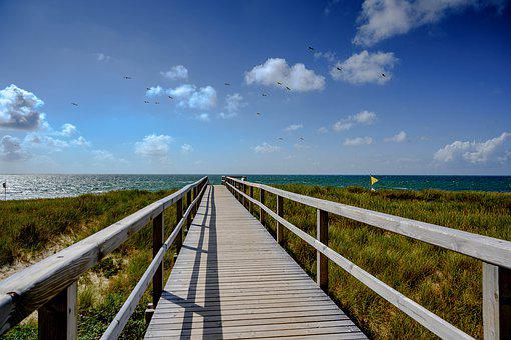 Web, A Belt Of Dunes, Sea, Water, North Sea, Beach