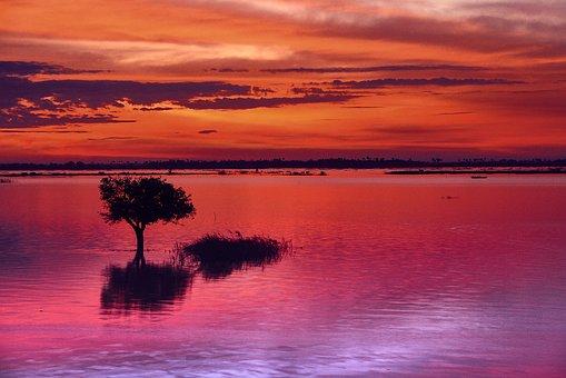 Afterglow, Tree, Lake, Abendstimmung, Sunset, Sky