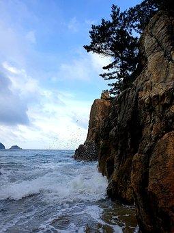 Sea, Waves, Water, Beach, Nature, Coastal, Sky