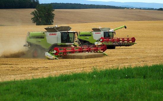 Combine Harvester, Harvest, Grain, Agriculture