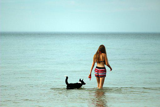 Sea, Spacer, Summer, Girl, Dog, Peace Of Mind