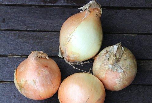 Onions, Vegetable, Healthy, Bulb, Fresh, Food, Group
