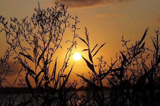 Sun, Sunset, Sky, Mood, Nature, Romantic, Twilight