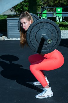 Fitness, Fitness Model, Sport, Force, Training, Muscles