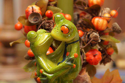 Frog, Frogs, Funny, Autumn Colours, Love, Kiss, Pair