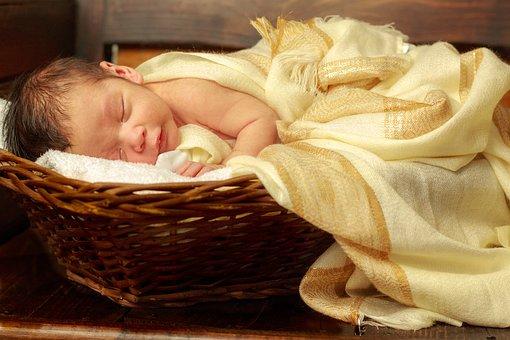 Newborn, Baby, Child, Sleep, Cute, Small, Portrait